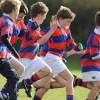 Youth & Mini Rugby start-back details