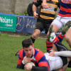 Clontarf 35 Young Munster 10