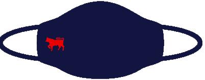 Navy Facemask